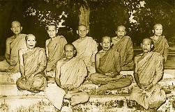 Thai forest meditation masters